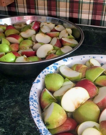Washed and quartered apples