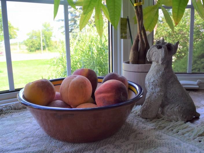 Ontario Peaches