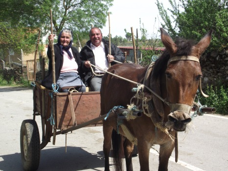 Portuguese Couple with Mule