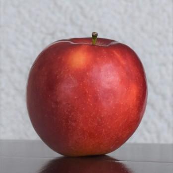Crimson Crisp Apple (2)